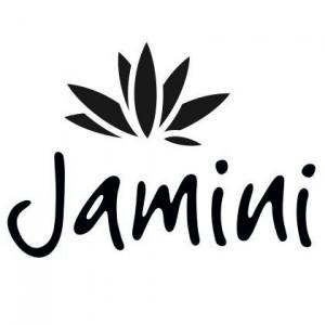 jaminilogo