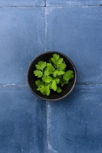 54-aubergines-coriande-inde-4-ingredient-641